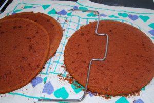 cokoladna-torta-z-visnjami-12