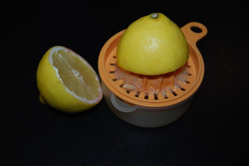 jagodni-gosti-sok-3