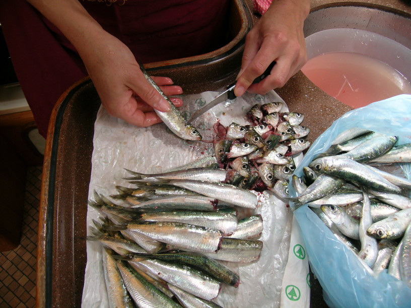 Sardele, slastno sočne kraljice med ribami- čiščenje in peka