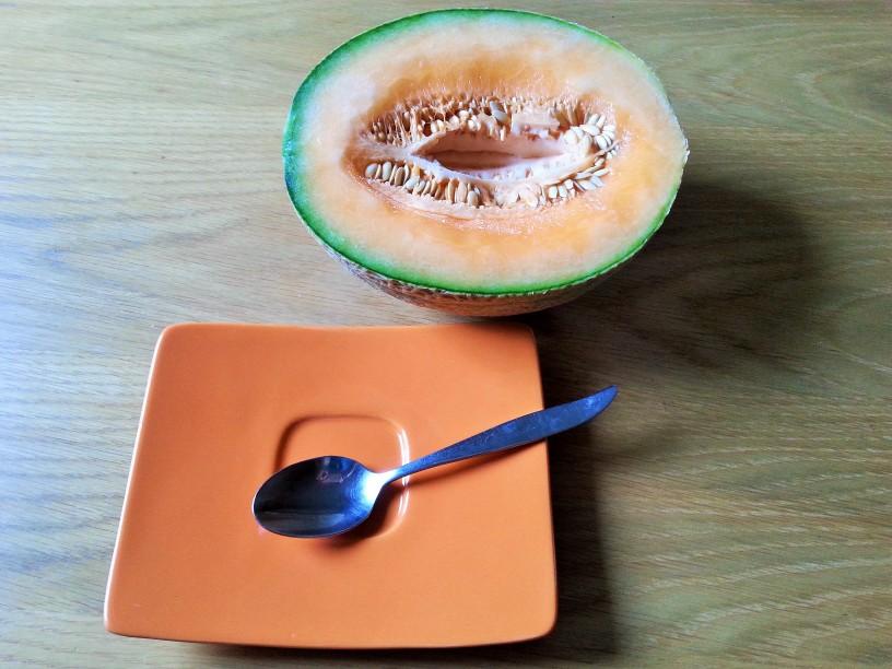 Melona-kako-se-je-lotiti-1