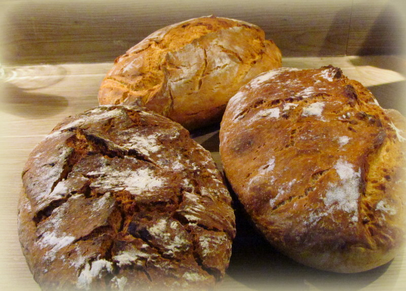 kruh-brez-gnetenja-18