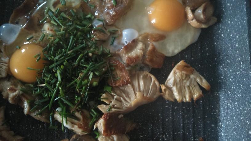 slastne gobe golobice z jajci (3)