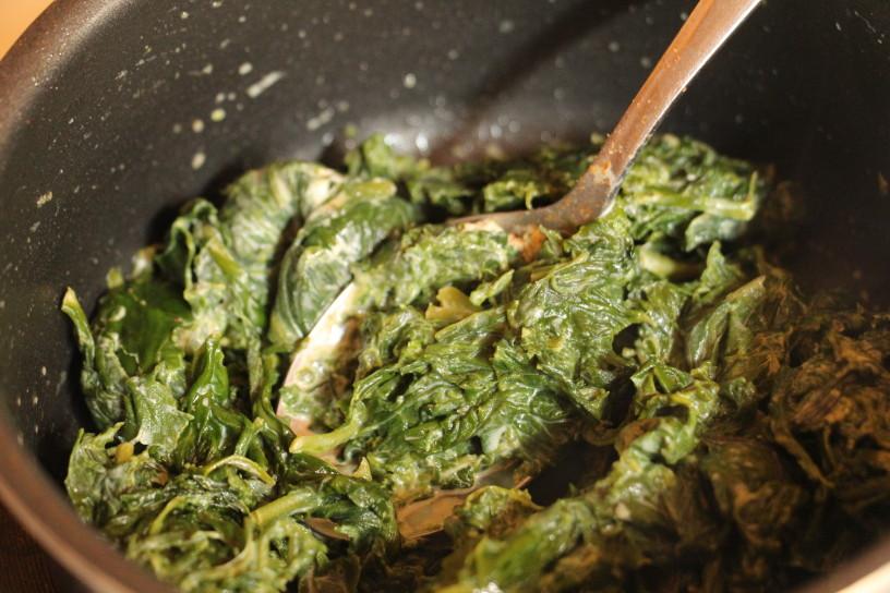 spinacni zepki s piscancem in mocarelo (1)