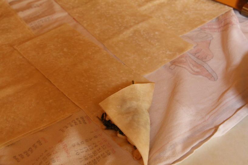 spinacni zepki s piscancem in mocarelo (8)