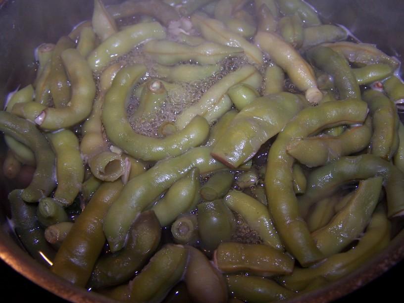 Mlad stročji fižol s hrustljavo slanino (3)