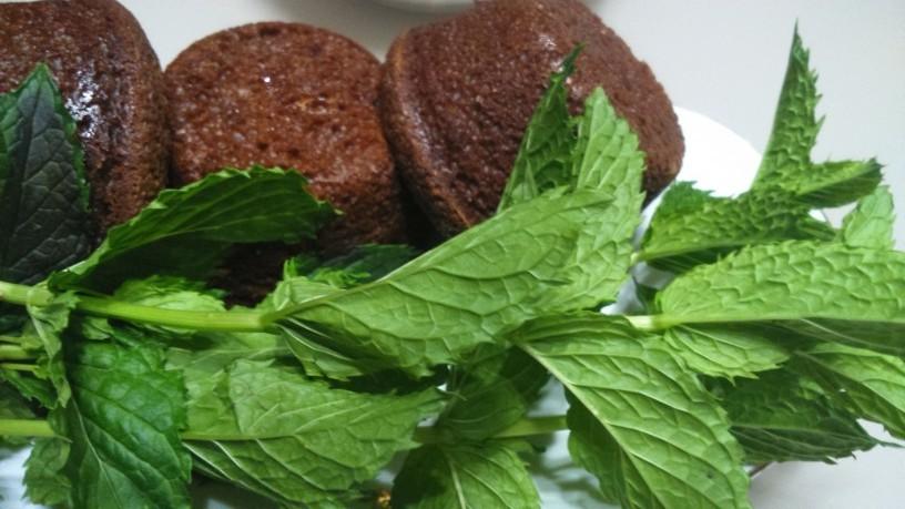 cokoladno melisini browniji (8)