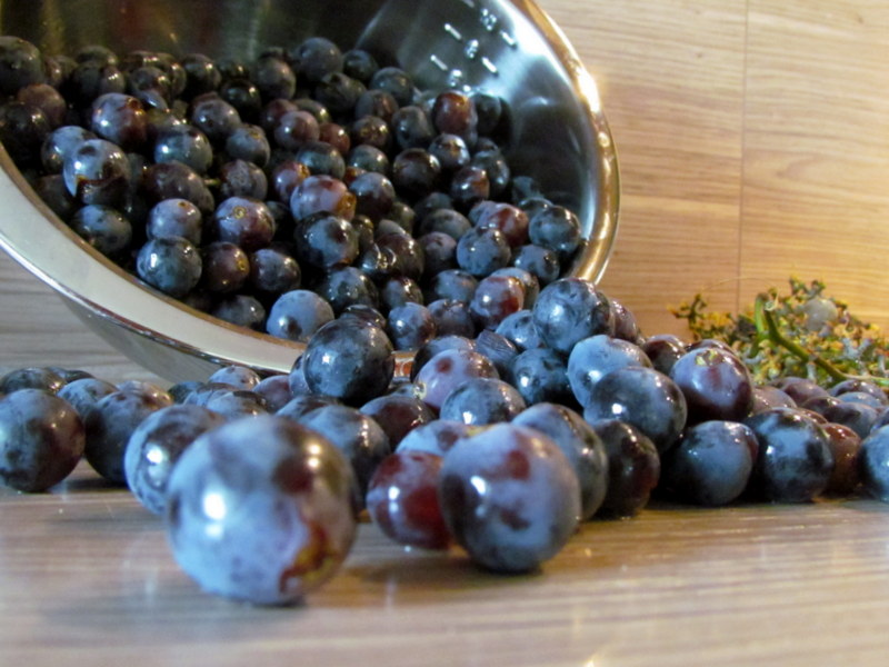 marmelada-iz-grozdja-jurka-1