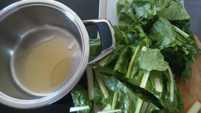 preprosta blitvina juha (2)