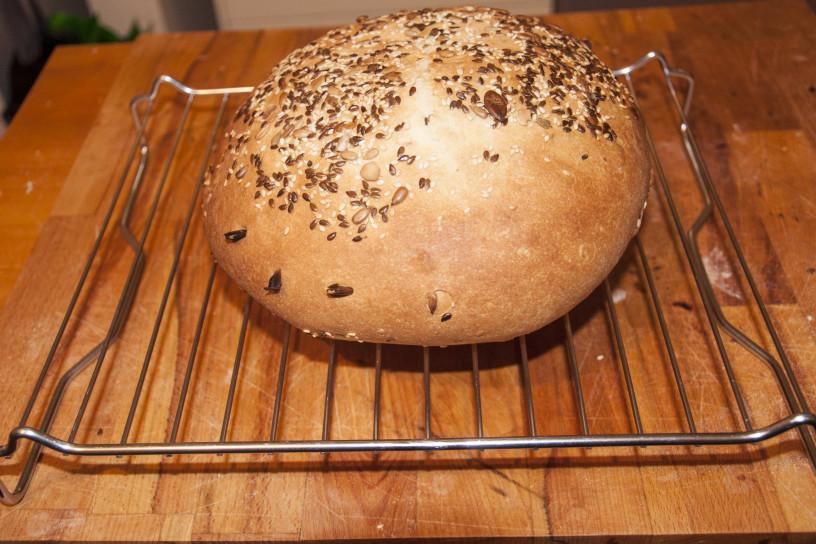 Kruh s semeni