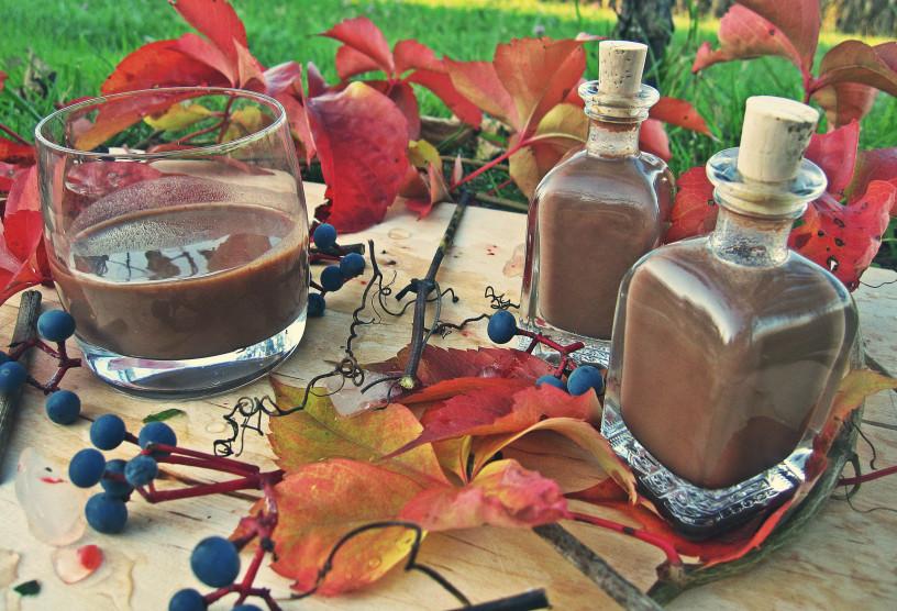 decembrske-pozornosti-domac-cokoladni-liker-1