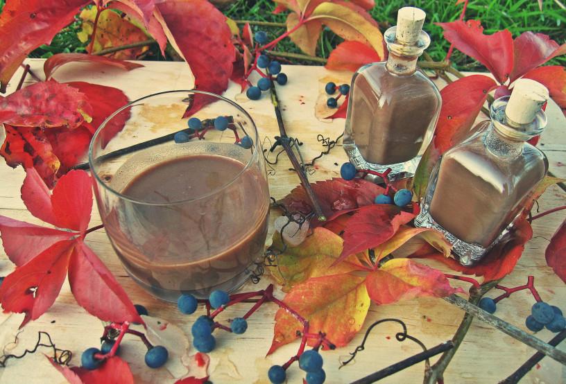 decembrske-pozornosti-domac-cokoladni-liker-8