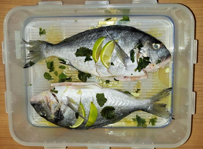 bela-riba-na-krompirjevi-posteljici-1