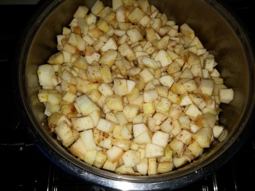 dišeč jabolčni puding