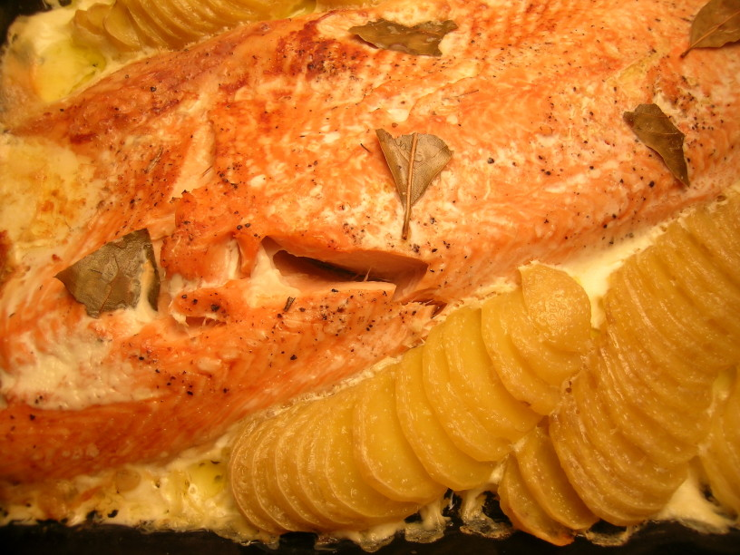 losos-v-pecici-s-smetanovim-krompirjem-10