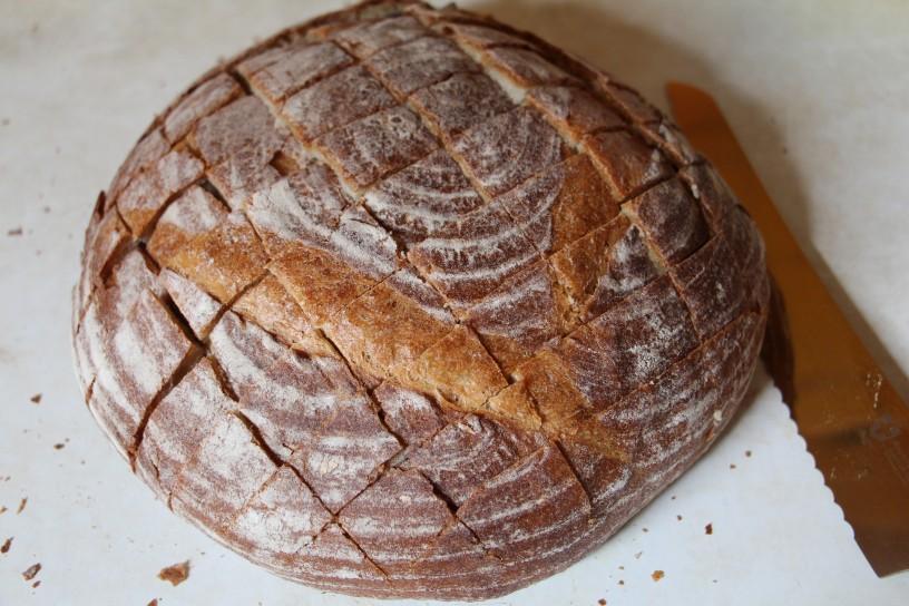 Kruh s cesnom, sirom in sunko - zvezda omizja (1)