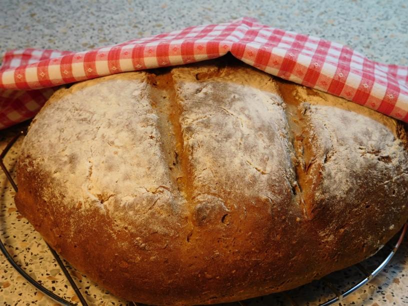 Enkrat vzhajan ajdov kruh z orehi