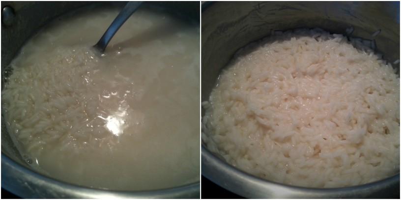 Riz-kot-v-kitajski-restavraciji-4