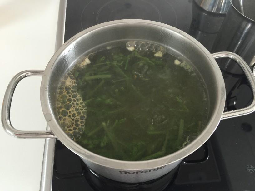 Spargljeva juha (8)