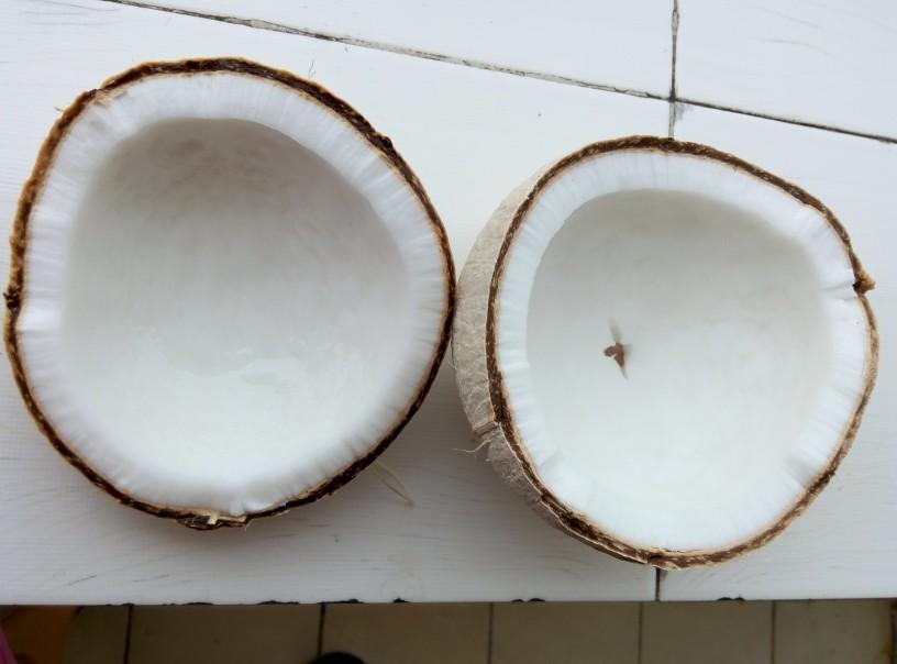Kokosova sadna pena2