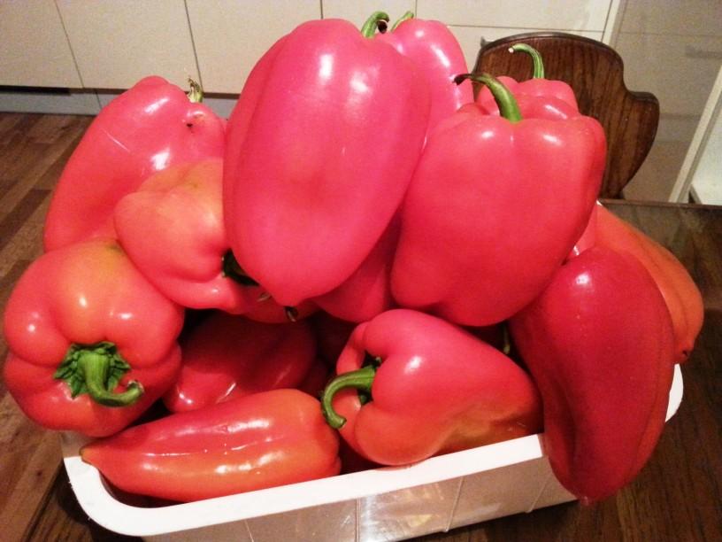 Vlozena-rdeca-paprika-s-cesnom-2