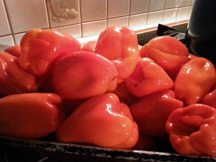 Vlozena-rdeca-paprika-s-cesnom-4