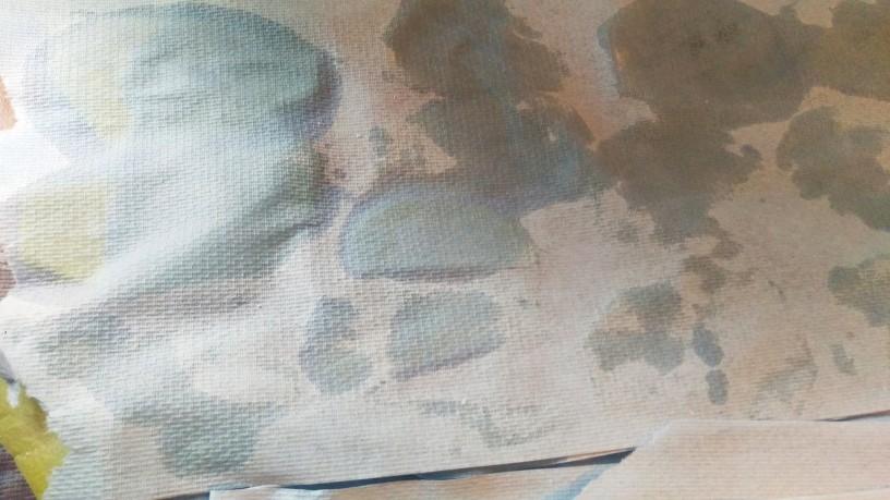 pecena-cajota-4