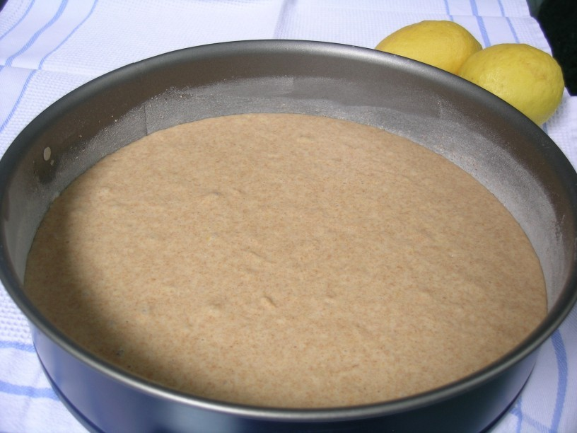 limonin-biskvit-za-vsak-dan-2