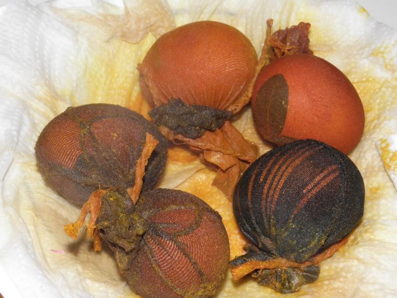 Barvanje jajčk na naraven način 6