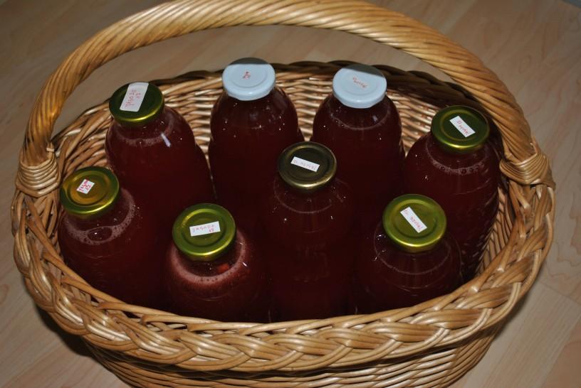 jagodni-sok