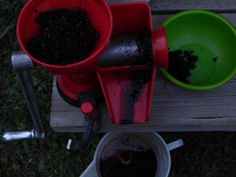 terjak-trjak-iz-bezgovih-jagod