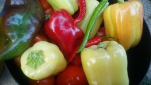 zelenjava v kozarcu