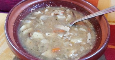 preprosta gobova juha