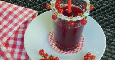 Ribezov sok iz sokovnika
