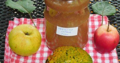 Jabolčna čežana za ozimnico