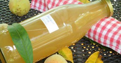 Gosti sok iz vinogradniških breskev