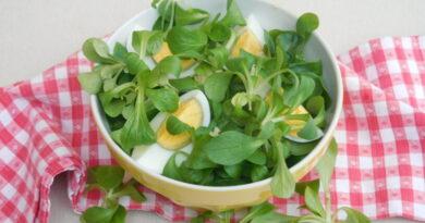 Motovilec z jajcem v solati