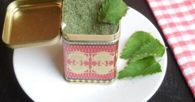 Melisa za čaj in začimbo